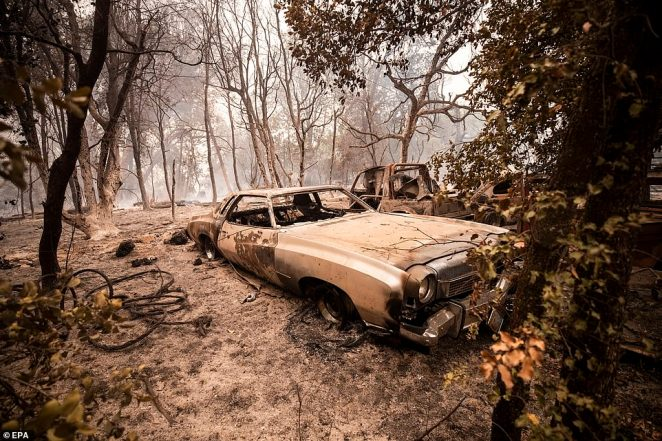 A burnt down old Cadillac rests amid the scorch smoldering trees in the Cascadel Woods of northern California