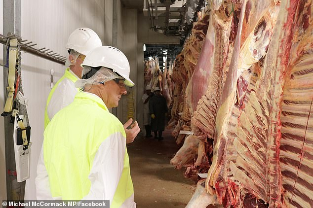 Almost 600 workers at Australia's largest meat processing facility have lost their jobs as the company scales back its operations (pictured, Michael McCormack at the plant)