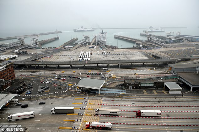 A leaked Government report suggested post-Brexit border chaos could result in a queue of 7,000 lorries in Kent. The Port of Dover is pictured on August 14