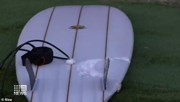 A tooth lodged in a surfer's longboard has confirmed he was killed by a white pointer
