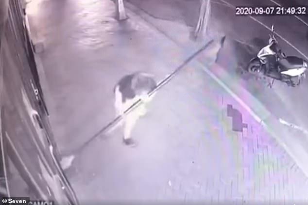 CCTV footage allegedly showsGreta Izurit, 28, allegedly vandalising various restaurants in Melbourne