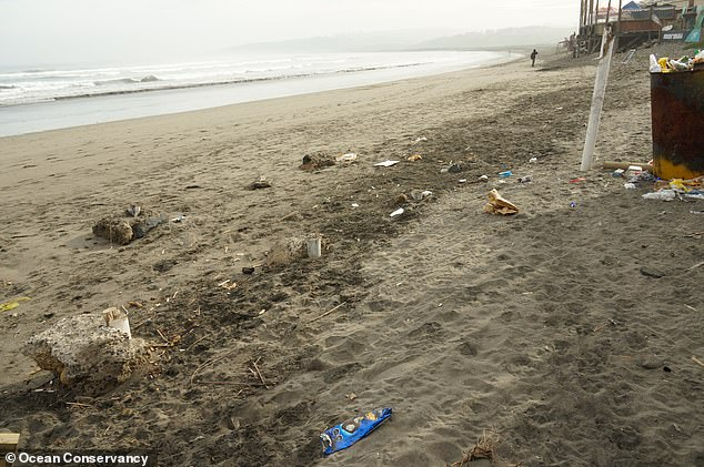 Plastic-based food wrappers have ousted cigarette butts as the dominant form of litter polluting our beaches (pictured) and waterways, experts have revealed