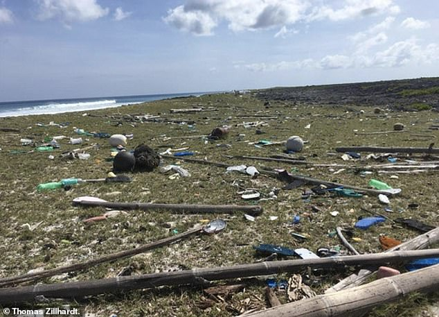 Mountains of plastic washes up on the island from around the world, causing problems for native wildlife such as turtles who mistake colourful lids for fruit