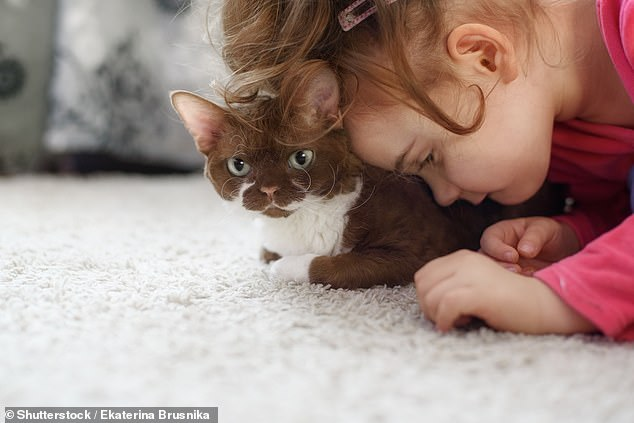 The scientists found that neuroatypical children gave more attention to cats than dogs, even though mutual gazes between cats and kids were rare.Previous research has found that children on the spectrum developed better social skills if they had a pet