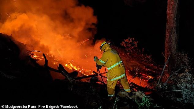The Mudeeraba Rural Fire Service (pictured) teamed up with theGuanaba Rural Fire Service to fight the Springbrook blaze