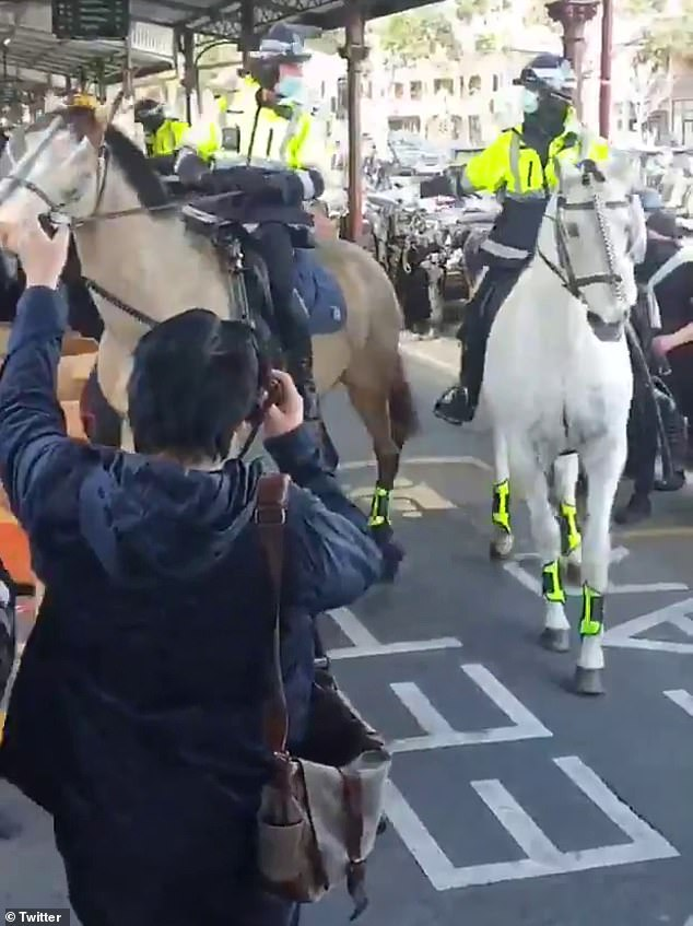 Police horses wore protective face shields but protesters were seen kicking at them in Melbourne on Sunday