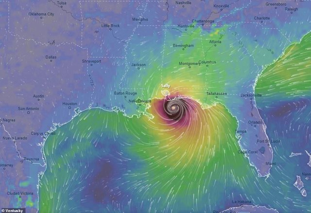 Tropical Storm Sally is expected to become a Category 2 hurricane with 100mph winds by the time it makes landfall in southeast Louisiana on Tuesday evening