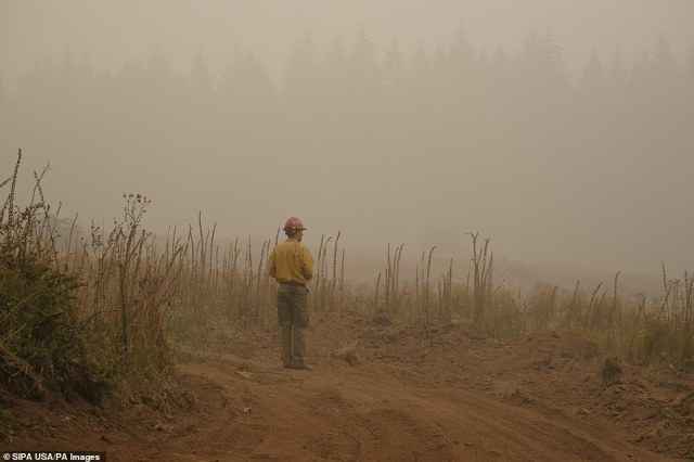 A firefighter looks out over an area where crews are working to create a boundary around the Riverside fire near Fernwood, Oregon on Sunday