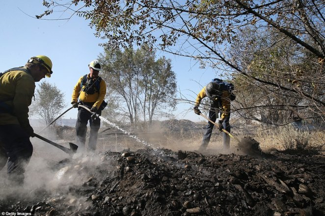 Firefighters Kyle Parker (L) Battalion Chief Bob Horst (C) and Sam Hochstatter from the Grant County Fire Department work to secure the fire line on the Cold Springs Fire on Thursday in Omak, Washington. Dozens of wildfires are raging throughout West as record high temperatures and dry vegetation fuel the fast-moving, destructive blazes, destroying hundreds of acres