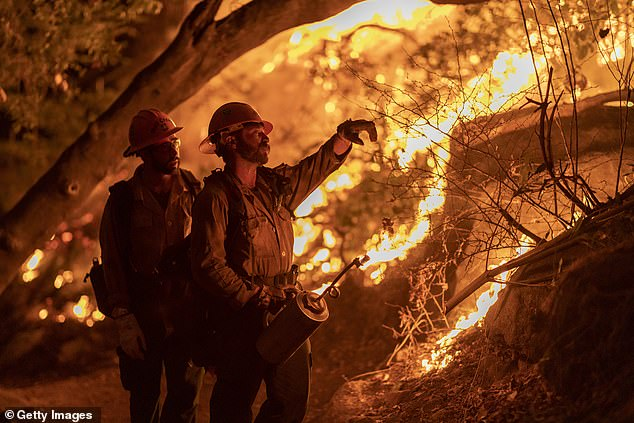 Mill Creek Hotshots set a backfire to protect homes during the Bobcat Fire on September 13, 2020 in Arcadia, California