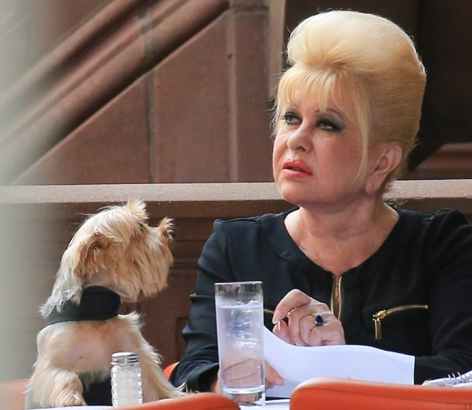 She ordered food for one and was accompanied by her pet teacup Yorkshire terrier pet dog named Tiger