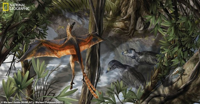 The European Synchrotron Radiation Facility, located in France, houses a particle accelerator capable of peering deep into fossils to create imagery that CT scans are unable to obtain.Dennis Voeten of Sweden¿s Uppsala University used the accelerator to cut through Archaeopteryx (artist impression) fossils, revealing the creature did not have the autonomy of flapping birds, but more of pheasants