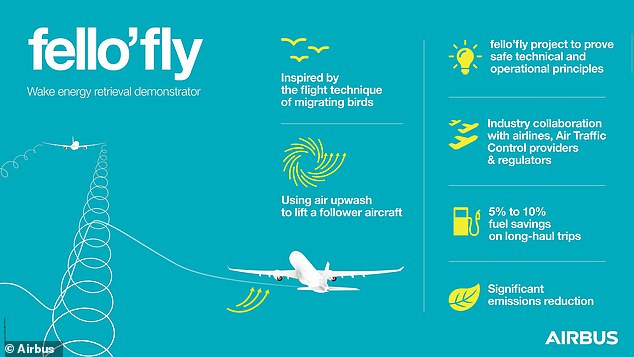 'In the aviation industry, achieving our emission-reduction targets will require implementing innovative new ways to use aircraft in the skies,' said Airbus managing director and fello'fly demonstration leader Nick Macdonald. Pictured, an illustration of the fello'fly method