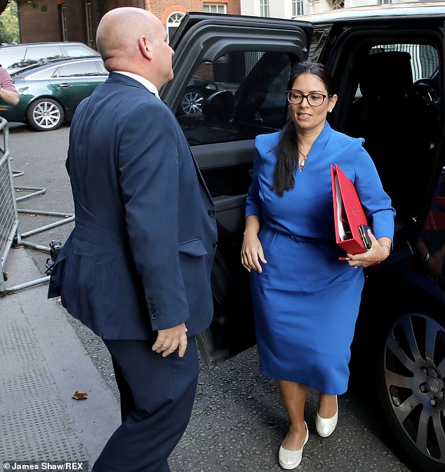 It comes after Home Secretary Priti Patel irritated critics by insisting that two families meeting by chance in the street and stopping to chat would constitute 'mingling' and breach the law