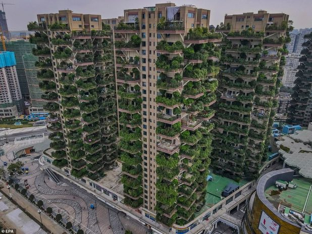 Drone photos show aerial views of Qiyi City Forest Garden residential buildings located in Chengdu, China