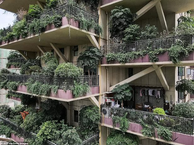 Some residents saw mosquitoes bite a handful of balconies with plants and outdoor furniture, and the lights inside the apartment turned on