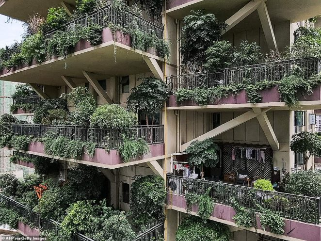 Some residents appeared to have braved the mosquitoes as a handful of balconies had pruned plants and outdoor furniture, and lights turned on inside the apartments
