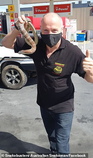 Mr Hoser (pictured) was called to the Coles Express in Nunawading on Wednesday after the serpent crawled out from underneath a car when the driver went inside to pay for petrol