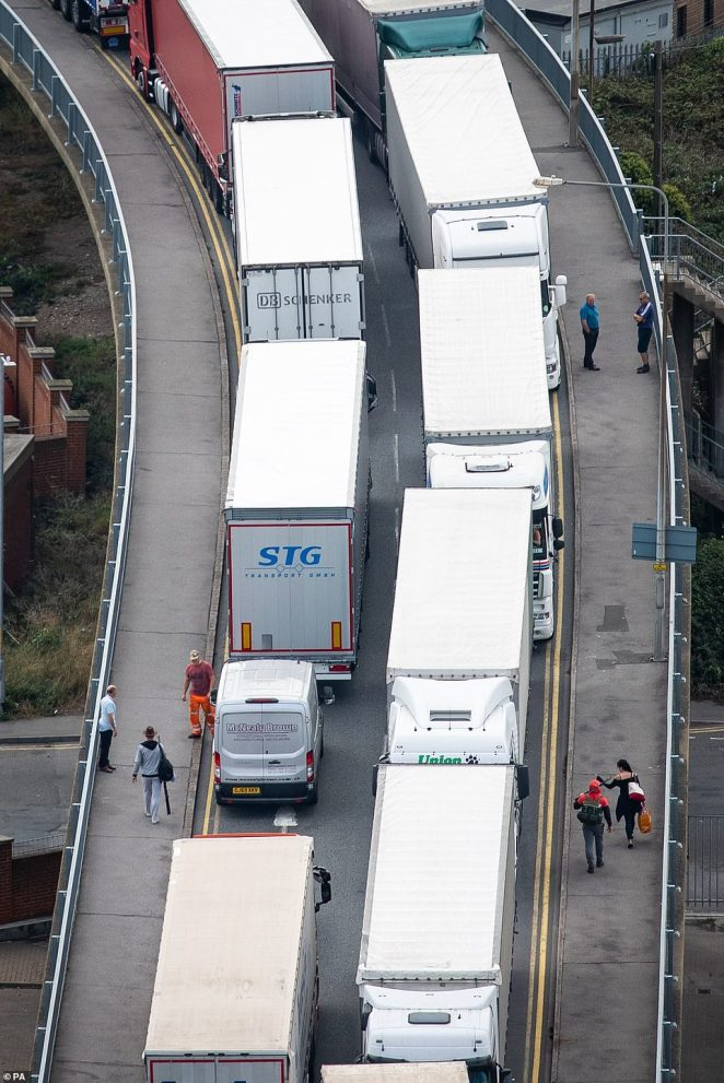Police are spot checking thousands of lorries trying to access the Port of Dover at Dover docks and the Channel Tunnel today