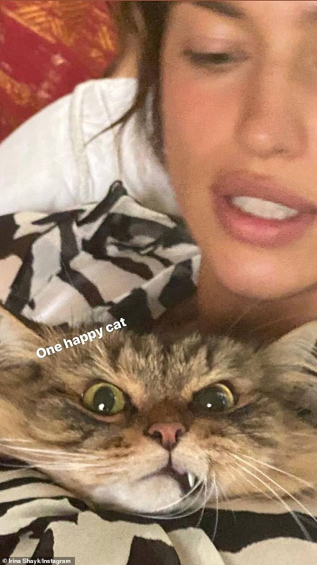 Shayk's street sighting came after she Instastoried a silly snap of herself holding her angry-looking pet kitty, which she captioned: 'One happy cat'