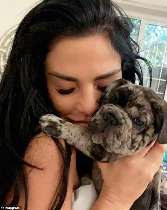 Horror:Katie Price has revealed her shock after she was illegally advised to give her puppy Rolo cannabis oil before suffocated to death in an armchair