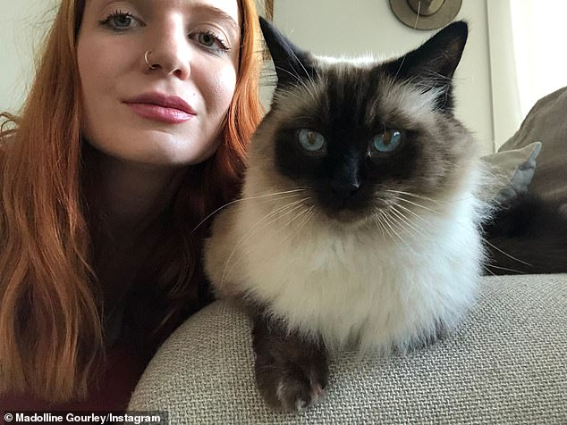 Madolline Gourley, 29, from Brisbane, pictured with Jaspurr who she minded for a couple in West End, Brisbane, last Christmas. Ms Gourley sat for them again just a few weeks ago