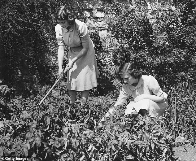 Princess Elizabeth and Princess Margaret on their allotment in the grounds of Windsor Castle in 1943,taking part in the government's 'Dig For Victory' campaign