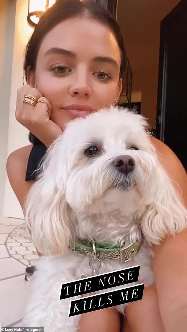 Love me, love my dog: This past Monday, Hale once again gushed over her pup in a post on her Instagram Story