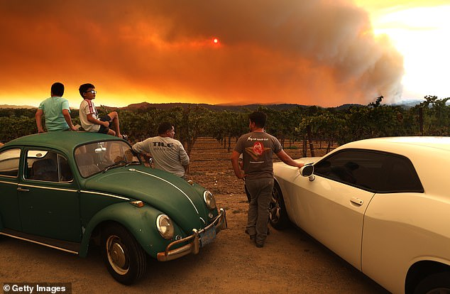 Wildfires have been blazing in California since August and the intense smoke is not just filling the air, but is making its way into grapes used to make wine