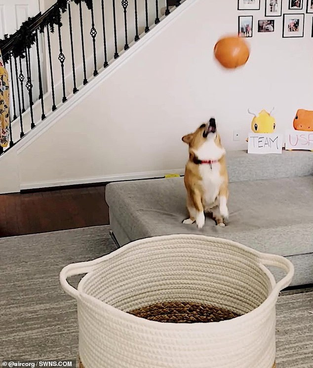 A video compilation shows off some of Lilo's best tricks as she hits the basketball towards different targets