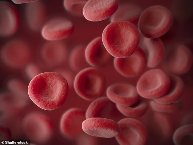 Shocking data from the peer-reviewed study reveals a person with red blood cells that vary significantly in size is 2.7 times more likely to die from Covid-19