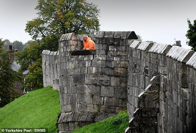 The area of wall which is showing signs of strain is located on the city walls between Baile Hill, the visible remains of a motte and bailey castle, and Bitchdaughter Tower