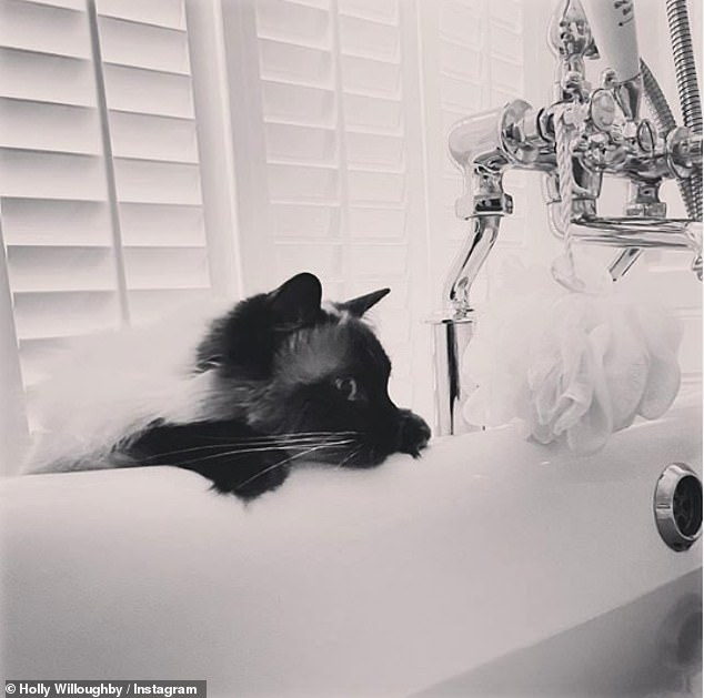 Peek-a-boo! If Holly wants a bit of rest and relaxation from home schooling, she can retreat her luxurious free-standing bath in the bathroom- if her cat Bluebell doesn't get there first