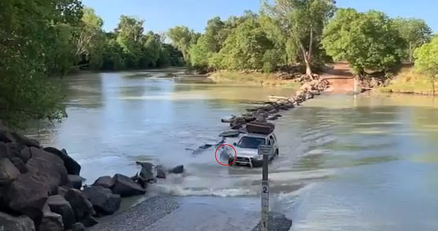 The footage, captured at Cahills Crossing, Kakadu National Park in the Northern Territory, showed a four-wheel drive driving through the water