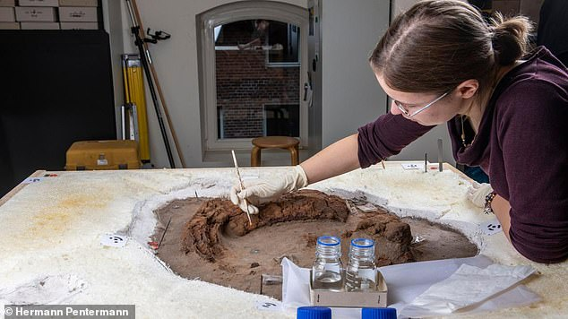 An experts at the museum inmuseum at Kalkriese carefully works on a discovery