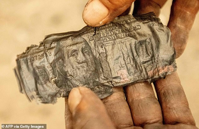 A $100 bill burnt in the Glass Fire is pictured on September 27 in Napa County, California