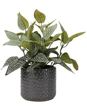 $6 faux plant in a pot