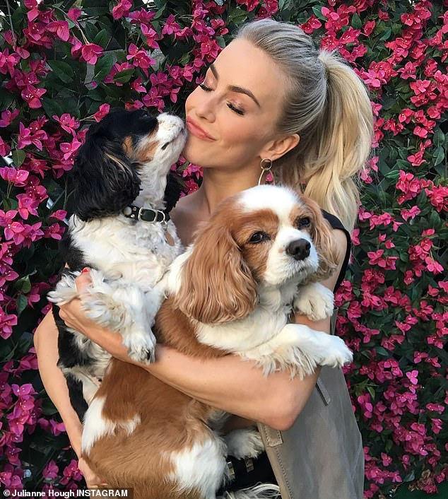 Heartbreak: Hough's explanation about how a 'tragic loss' delayed release of the video may be a reference to the deaths of her beloved dogs, Lexi and Harley, in September 2019