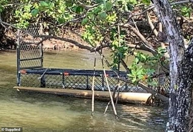 A trap has been left in the waterway at Palm Cove (pictured) for months but it has proven ineffective against the two to three-metre crocodile