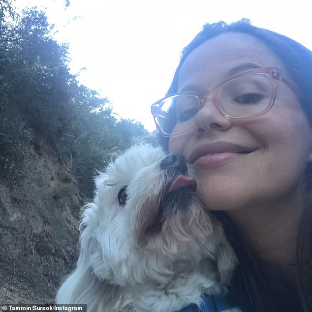 Sad days: Almost two years earlier, in December 2018, Tammin grieved the loss of her 'first born', dog Tiger (left), following an attack by a coyote