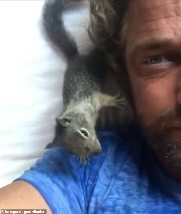 BFFs:Gerard, 50, sported long locks and a rugged beard in the video, beaming as his new furry friend clambered all over him