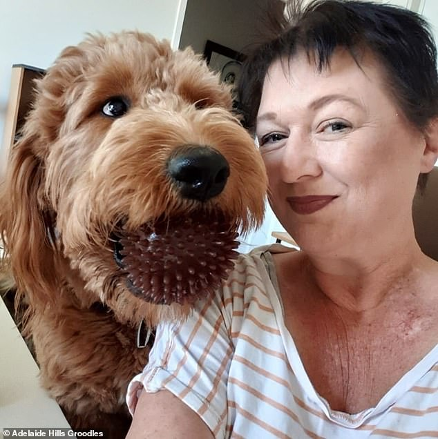 Ms Wilkinson (pictured) told Daily Mail Australia she was receiving an average of eight inquiries a week about her dogs before COVID-19 - now she receives 12 a day