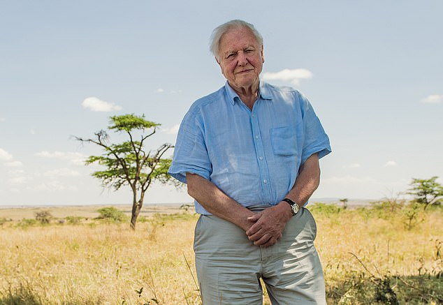 Sir David Attenborough (pictured) has warned the 'excess' of Western capitalism must be curbed in order to protect nature, adding that people are beginning to realise that 'greed does not bring joy'