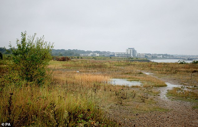 Swanscombe in Kent, one of the best hot spots outside of London, recently made headlines as a proposed site (pictured) for the London Resort, a Disneyland-style mega-theme park.