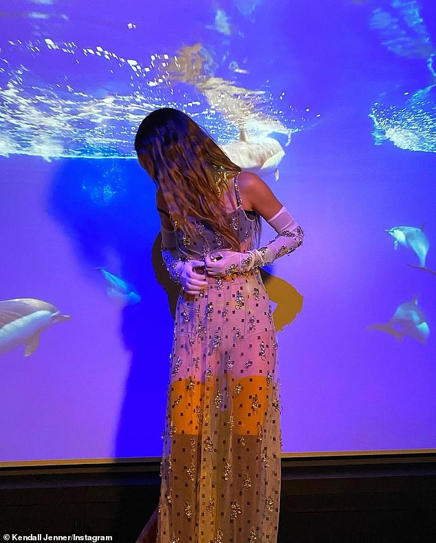 Dreamy: Another set of snaps were taken in front of a projector beaming scenes of sharks and cityscapes