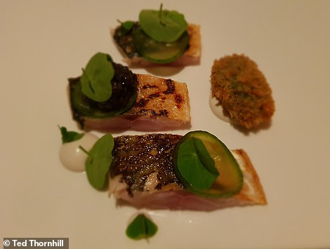 Ted's Newlyn mackerel with Porthilly oyster, cucumber and caviar