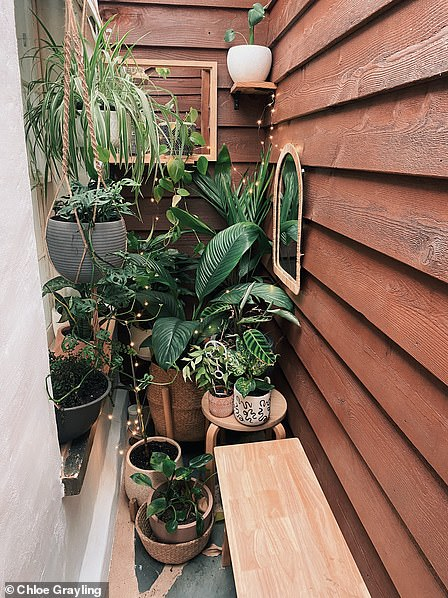 The tiny greenhouse in the middle of their house (pictured)