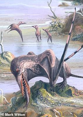 Pictured, apterosaur devours a fish