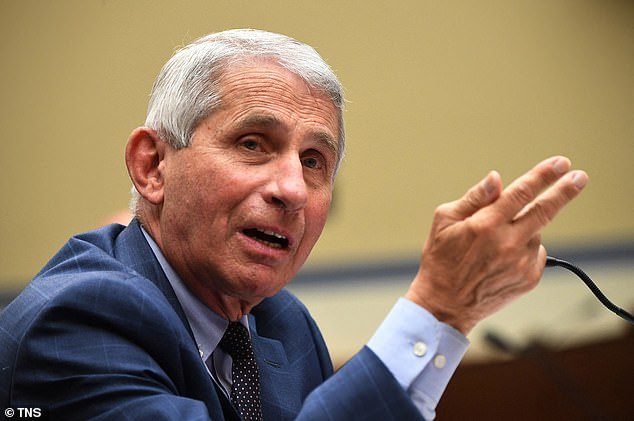 Dr. Anthony Fauci has warned that the U.S. cannot afford to wait until it reaches herd immunity as it would mean 'so much suffering and death in the country, it would be unacceptable'