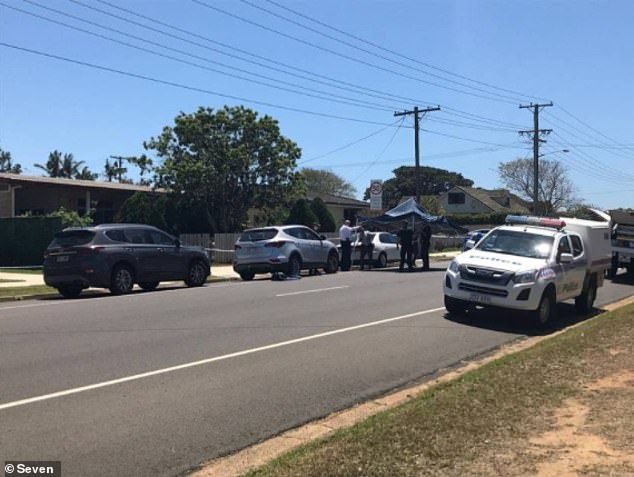Police set up a crime scene after the body of Lisa Hund, 36, was allegedly found stabbed to death inside her home (pictured, police at the scene)
